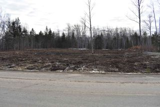 Photo 7: Lot 6 Back Road in Lansdowne: 401-Digby County Vacant Land for sale (Annapolis Valley)  : MLS®# 202100793