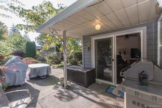 Photo 22: 4999 Del Monte Ave in VICTORIA: SE Cordova Bay House for sale (Saanich East)  : MLS®# 799964