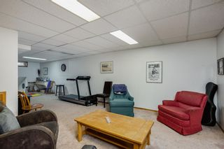 Photo 25: 1256 SUN HARBOUR Green SE in Calgary: Sundance Detached for sale : MLS®# A1036628