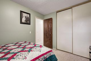 Photo 15: 104 420 GRIER Avenue NE in Calgary: Greenview House for sale