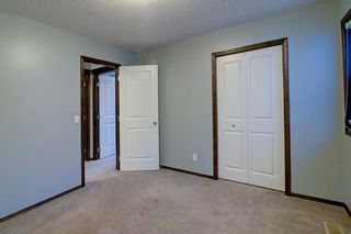 Photo 19: 180 CRANBERRY Circle SE in Calgary: Cranston Detached for sale : MLS®# C4222999