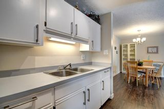 Photo 4: 414 1305 Glenmore Trail SW in Calgary: Kelvin Grove Apartment for sale : MLS®# A1067556