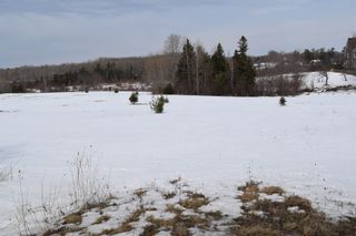 Photo 1: 311 Highway in Waughs River: 103-Malagash, Wentworth Vacant Land for sale (Northern Region)  : MLS®# 202104722