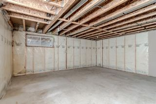Photo 29: 178 Morningside Circle SW: Airdrie Detached for sale : MLS®# A1127852