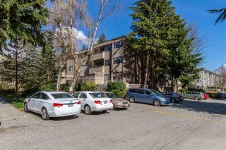 "Photo 15: 32 2434 WILSON Avenue in Port Coquitlam: Central Pt Coquitlam Condo for sale in ""ORCHARD VALLEY"" : MLS®# R2379250"