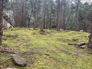 Photo 7: Lot 36 Ling Cod Lane in : Isl Mudge Island Land for sale (Islands)  : MLS®# 869675
