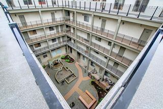 Photo 29: 413 527 15 Avenue SW in Calgary: Beltline Apartment for sale : MLS®# A1110175