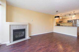 Photo 14: 505 827 Fairfield Rd in Victoria: Vi Downtown Condo for sale : MLS®# 884957