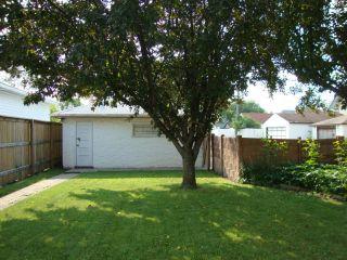 Photo 17: 591 ANDREWS Street in WINNIPEG: North End Residential for sale (North West Winnipeg)  : MLS®# 1214838