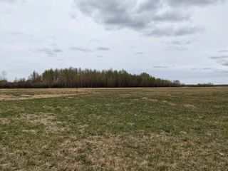 Photo 3: RR 260 Twp 62: Rural Westlock County Rural Land/Vacant Lot for sale : MLS®# E4224350