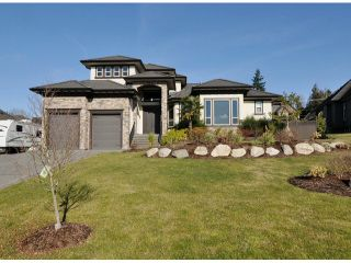 Photo 1: 18683 53a Avenue in Surrey: Cloverdale BC House