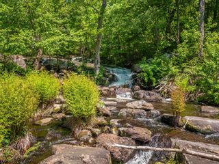 Photo 23: 1282 Woa Anstruther Lake View in North Kawartha: Rural North Kawartha House (Bungalow) for sale : MLS®# X5255516