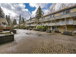 "Photo 33: 14 2978 WALTON Avenue in Coquitlam: Canyon Springs Townhouse for sale in ""Creek Terraces"" : MLS®# R2548187"
