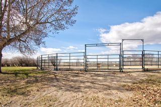 Photo 35: 17 Willowside Drive: Rural Foothills County Detached for sale : MLS®# A1141416