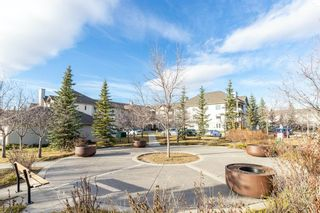 Photo 2: 306 2000 Citadel Meadow Point NW in Calgary: Citadel Apartment for sale : MLS®# A1055011