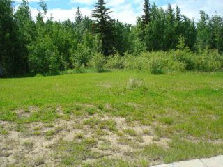 Photo 5: 41 Heron Point Cl: Rural Wetaskiwin County Rural Land/Vacant Lot for sale : MLS®# E4233949
