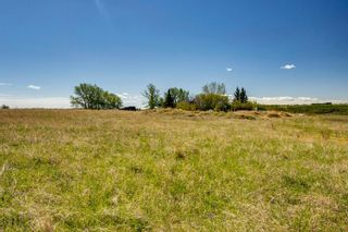 Photo 19: 286006 Ridgeview Way E: Rural Foothills County Residential Land for sale : MLS®# A1108192