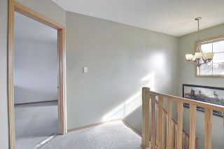 Photo 23: 67 HAWTHORNE Crescent: St. Albert House for sale : MLS®# E4236030