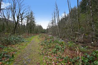 Photo 12: 1999 CAROL Road: Cultus Lake Land for sale : MLS®# R2529330