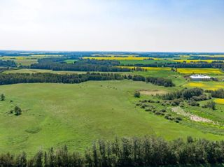 Photo 27: 461017A RR 262: Rural Wetaskiwin County House for sale : MLS®# E4255011