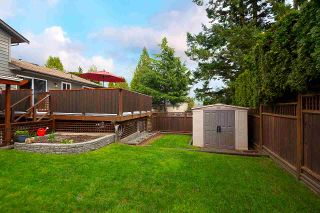 """Photo 33: 11784 91 Avenue in Delta: Annieville House for sale in """"Fernway Park"""" (N. Delta)  : MLS®# R2559508"""