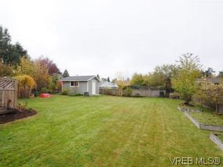 Photo 20: 843 Tulip Ave in VICTORIA: SW Marigold House for sale (Saanich West)  : MLS®# 554188