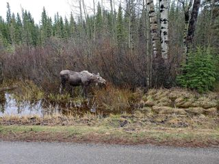Photo 40: .. None: Bragg Creek Residential Land for sale : MLS®# A1131758