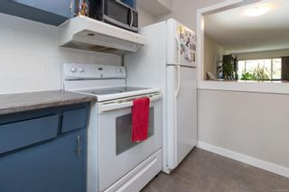 Photo 8: 3248/3250 Cook St in : SE Maplewood Full Duplex for sale (Saanich East)  : MLS®# 873306