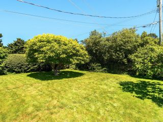 Photo 22: 3205 Carman St in : SE Camosun House for sale (Saanich East)  : MLS®# 878227