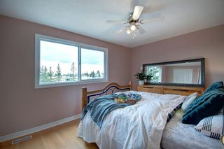 Photo 22: 40 Abergale Way NE in Calgary: Abbeydale Detached for sale : MLS®# A1093008