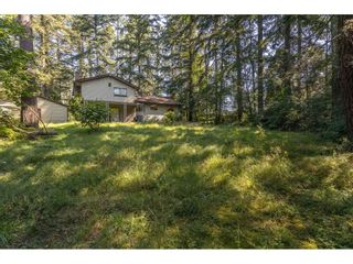 Photo 26: 13458 58 Avenue in Surrey: Panorama Ridge House for sale : MLS®# R2478163