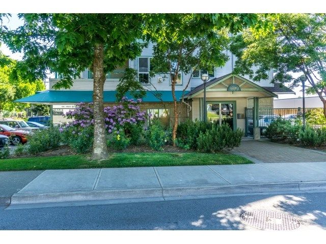 """Main Photo: 304 6390 196 Street in Langley: Willoughby Heights Condo for sale in """"Willow Gate"""" : MLS®# R2070503"""