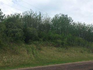 Photo 1: township62 RG RD 411: Rural Bonnyville M.D. Rural Land/Vacant Lot for sale : MLS®# E4100378