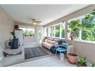 Photo 5: 20197 PATTERSON Avenue in Maple Ridge: Southwest Maple Ridge House for sale : MLS®# V975551