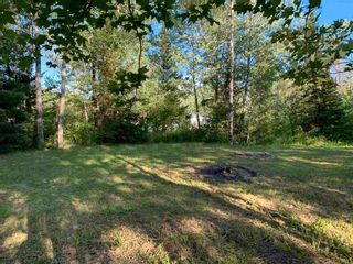 Photo 7: Lot 31 Highway 14 in Nine Mile River: 105-East Hants/Colchester West Vacant Land for sale (Halifax-Dartmouth)  : MLS®# 202118383