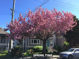 Photo 54: 319 Vancouver St in : Vi Fairfield West House for sale (Victoria)  : MLS®# 855892