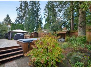"""Photo 19: 4627 198A Street in Langley: Langley City House for sale in """"MASON HEIGHTS"""" : MLS®# F1425848"""