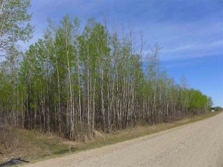 Photo 6: 50 Ave RR 281: Rural Wetaskiwin County Rural Land/Vacant Lot for sale : MLS®# E4191207