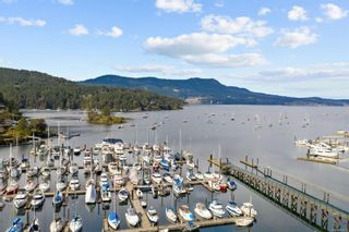 Photo 37: 941 Grilse Lane in : CS Brentwood Bay House for sale (Central Saanich)  : MLS®# 869975