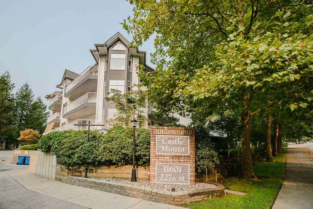 Photo 4: Photos: 110 11601 227 Street in Maple Ridge: East Central Condo for sale : MLS®# R2504284