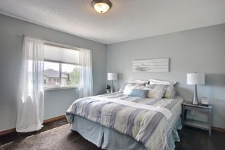 Photo 19: 127 Chapman Circle SE in Calgary: Chaparral Detached for sale : MLS®# A1110605