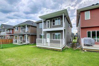 Photo 23: 3905 ROBINS Crescent in Edmonton: Zone 59 House for sale : MLS®# E4264867