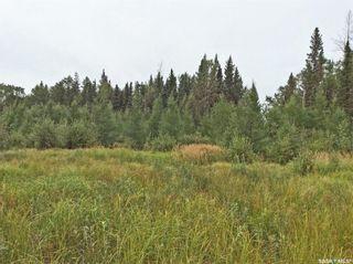 Photo 2: 1/2 Quarter Paradise in Big River: Lot/Land for sale (Big River Rm No. 555)  : MLS®# SK867513