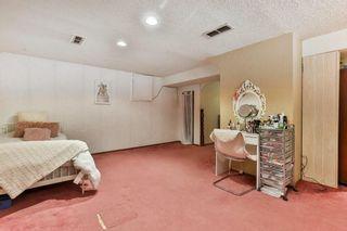 Photo 25: 35 Abergale Close NE in Calgary: Abbeydale Detached for sale : MLS®# C4267496