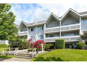Photo 1: 104 2055 SUFFOLK AVENUE in Port Coquitlam: Glenwood PQ Condo for sale : MLS®# R2238454
