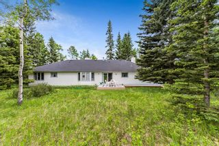 Photo 11: 108 Sunrise Way: Rural Foothills County Detached for sale : MLS®# A1090786