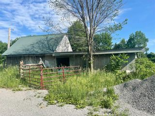 Photo 11: 664 Lake Dalrymple Road in Kawartha Lakes: Rural Carden House (Bungalow) for sale : MLS®# X5274471