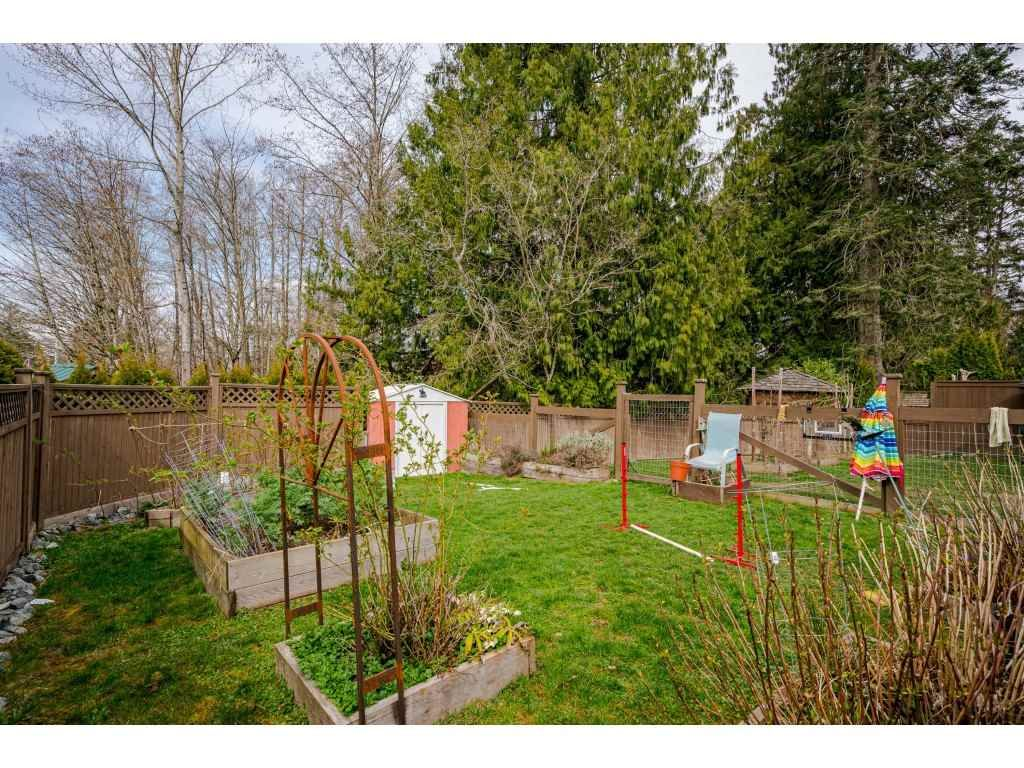 Photo 28: Photos: 20305 50 AVENUE in Langley: Langley City House for sale : MLS®# R2561802