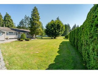 """Photo 39: 82 CLOVERMEADOW Crescent in Langley: Salmon River House for sale in """"Salmon River"""" : MLS®# R2485764"""