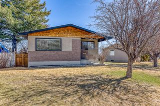 Main Photo: 1008 32 Street SE in Calgary: Albert Park/Radisson Heights Detached for sale : MLS®# A1090391